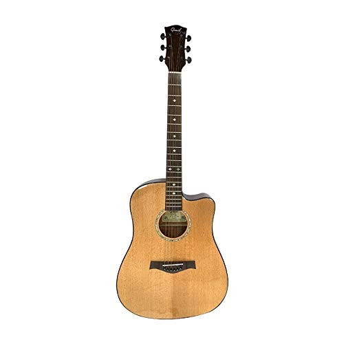 Acoustic Guitar in india under 10000